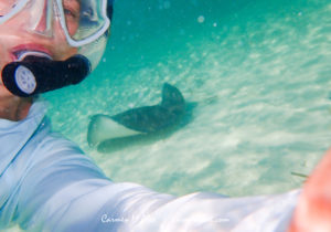 How to take a selfie with a sting ray.