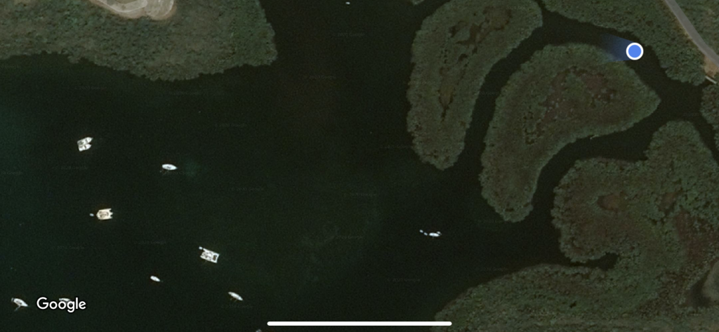 Location of Viento Azul in the mangroves.