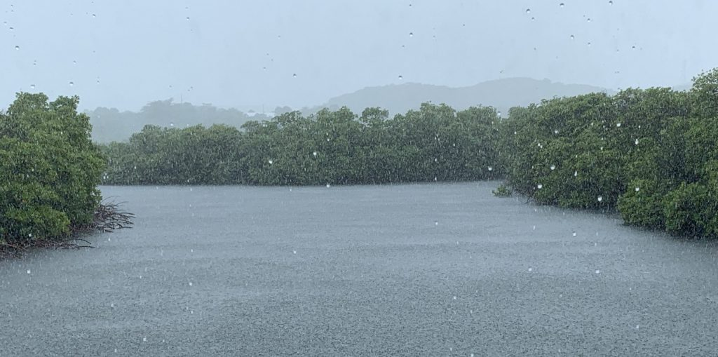 Image of rainstorm over a mangrove channel in Culebra.